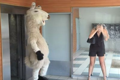 Remi Gaillard Copies Animals Behaviour, Makes Everyone Laugh