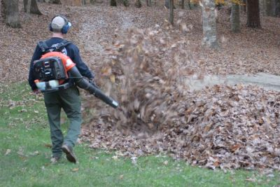 Dad Gets Out The Leaf Blower, Gets Fright Of His Life With What's Lurking Underneath
