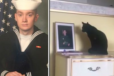 Black Cat Won't Stop Staring At Photo Of Navy Son Until Mom Pieces Together Truth She Missed