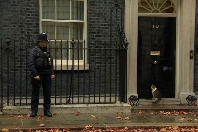 Hilarious Moment Downing Street Policeman Knocks On Door To Let Cat Inside