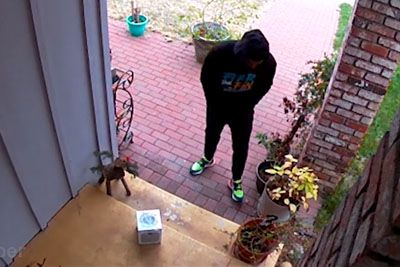 Man Has Enough Of Package Thiefs, Sets A Hilarious Glitter Trap