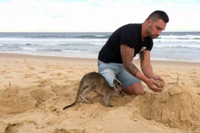 Man Shows Us His Special Friendship With His Little Kangaroo In Australia