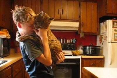 Boy Saved The Bobcat From Forest Fire - Watch How Cat Shows Him Love