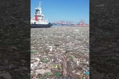 High Tide Brings Over 300 Tons Of Plastic Garbage In South Africa's Port