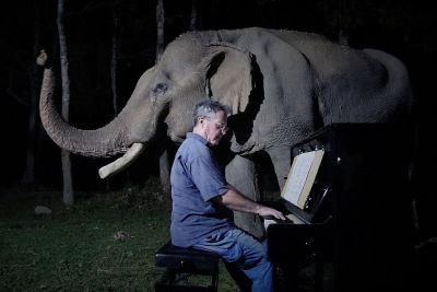 Pianist Plays Beethoven's