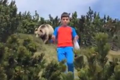 Giant Brown Bear Stalking Child While His Father Captures Video On Camera