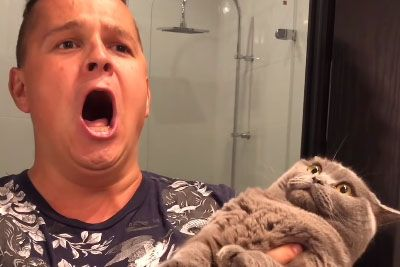 Cat Goes Derp Hearing It's Owner's Singing Skills