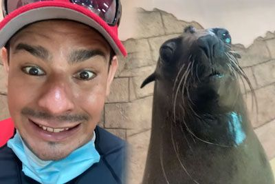 Man Smiles At The Camera, Then Captures Hilarious Sea Lion's Response