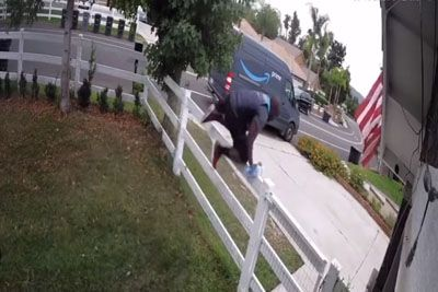 Amazon Driver Leaps Over Fence To Escape Huge, Friendly Dog