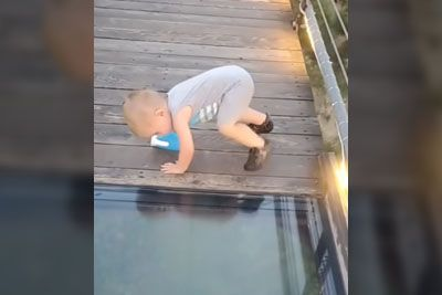 Toddler Attempts To Cross Onto Glass Bridge